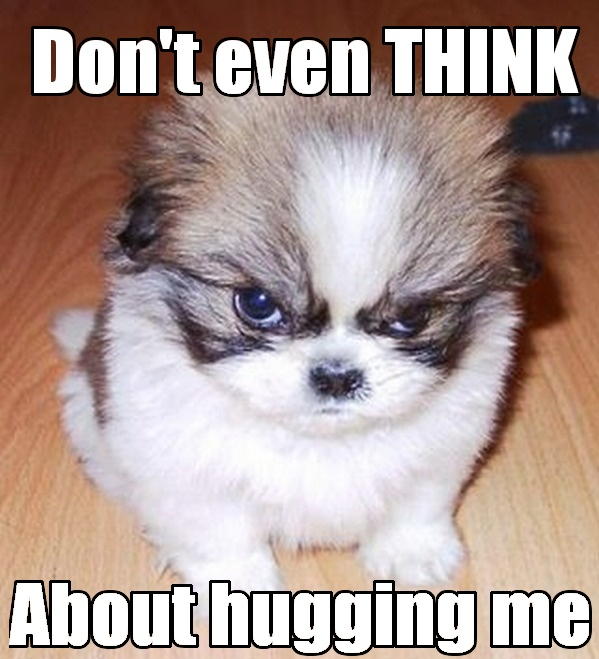 dont think about-hug
